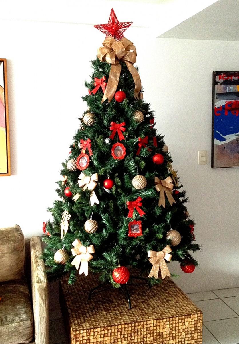 Decor de Natal Como escolher o tipo deárvore de Natal perfeita para sua casa Muito Diva -> Como Decorar Uma Arvore De Natal Simples E Bonita